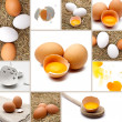 Stock Photo: Eggs Collage