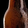 Beer bottle with Drops — Stock Photo