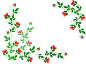 Rosnące liście z serca — Zdjęcie stockowe