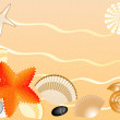 Seashells, stones, seastars on sand background — Stock Photo