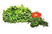 Fresh lettuce frillice salad dill and tomato — Stock Photo