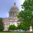 Stock Photo: State Capital