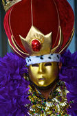 Mardi Gras Costume — Stock Photo