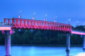 Walking Bridge — Stock Photo