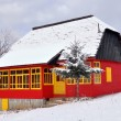 Rustic colored house with snow on the roof — Stock fotografie