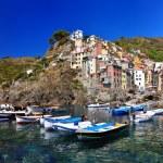 Riomaggiore, Cinque Terre, Italy — Stock Photo #8868062