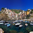 Boats in Riomaggiore — Stock Photo #8868157