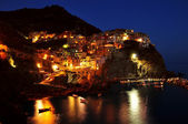 Manarola at night — Stock Photo