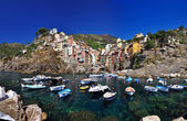 Boats in Riomaggiore — Stock Photo
