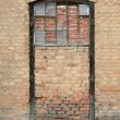 Sealed door with brick wall — Stock Photo #10034783