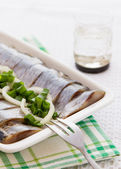 Herring fillets with herbs — Stock Photo