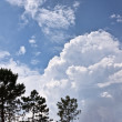 Clouds and Trees - Stock Photo