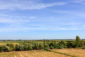 Blue sky over green field oin Portugal lowlands — Stock Photo