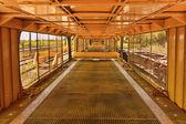 Yellow Tunel — Stock Photo
