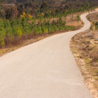 Stock Photo: Tarmac road to top of hill , surrounded by woods