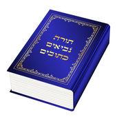 Vector illustration of the Torah book (Torah-Hebrew) — Stock Vector