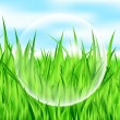 Vector illustration of drop on grass — Stock Vector