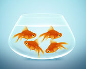 Goldfish in small bowl — Stock Photo