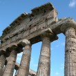 Paestum — Photo #8363698
