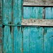 Ancient door texture — Stock Photo