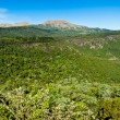 Beautiful landscape of Hogsback mountain — Stock Photo