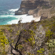Rough coastline of South Africa — Stock Photo