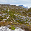 Stock Photo: Walking trail on top of table mountain