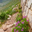 Stock Photo: Walking trail along steep mountain side