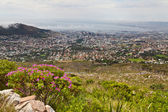 Looking down at Cape town — Stock Photo