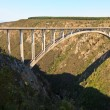 Bridge crossing a canyon — Stock Photo #10074021