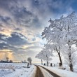Cloudscape in a white winter landscape — Stock Photo
