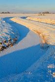 溝の冬序説 — ストック写真