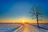 Sunset in a white winter landscape — Stock Photo