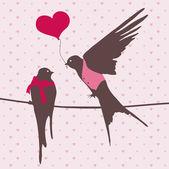 Cute birds in love — Stock Photo