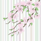 Vector sakura branch with flowers — Stock Vector