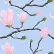 Seamless pattern with magnolia flowers — Stock Photo