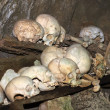 Skulls and bones in a burial cave (grave) in Tana Toraja - Sulawesi - Indon - Stock Photo