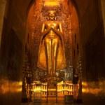 Statue of golden buddha in Ananda Pahto temple in Bagan - Myanmar (Burma) — Stock Photo #8331016