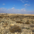 Stone desert in Umm Ar-Rasas in Jordan — Stock Photo