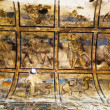 Mural in AmrCastle - bathhouse - Desert Castle in Jordan — ストック写真 #9800947