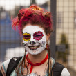Parade Spectator With Face Paint — Stok Fotoğraf #8040472