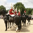 Royal Cavalry On Parade - Stock Photo