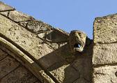 Gárgula de tromba d'água na abadia — Fotografia Stock