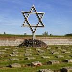 ������, ������: Star of David Memorial