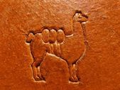 Llama outline on leather — Stock Photo