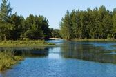 Winding River — Stock Photo
