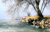Spring Thaw Along Beautiful Shoreline — Stock Photo