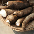 Fresh Cassava — Stock Photo #8935285