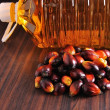 Palm Oil fruits — Foto de Stock