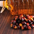 Palm Oil fruits — Stockfoto